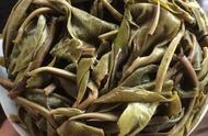 龙珠古树普洱茶用什么杯子 龙珠普洱茶价格表